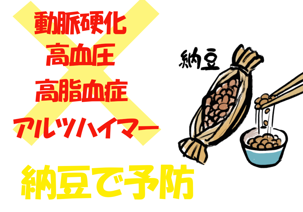 納豆 動脈硬化 高脂血症 予防